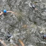 Brust oder Kraul? Entscheidungshilfe für Triathlon-Einsteiger